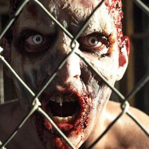Zombie Behind Fence